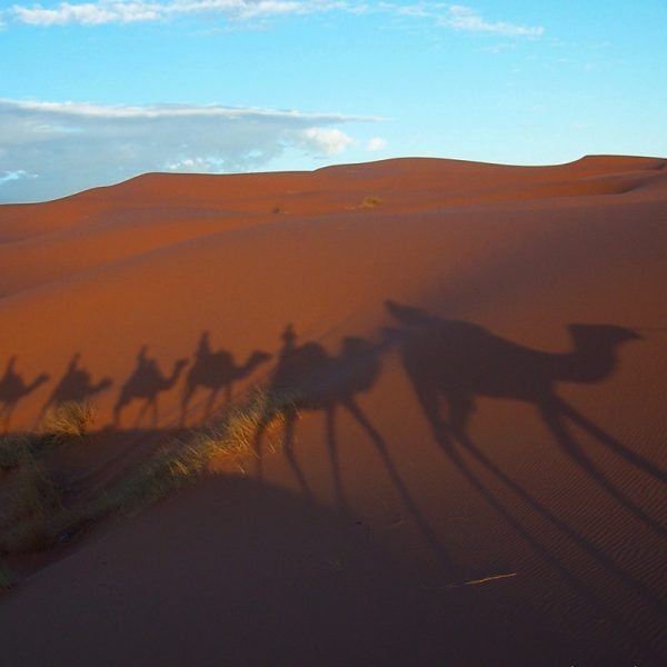 Morocco Merzouga Photo Louise Carey