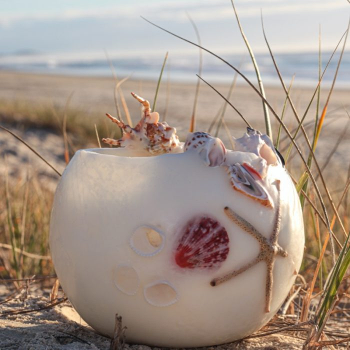 Shell embedded lanterns adorn your home with natural beautiful. Photo by Kim Vecie.