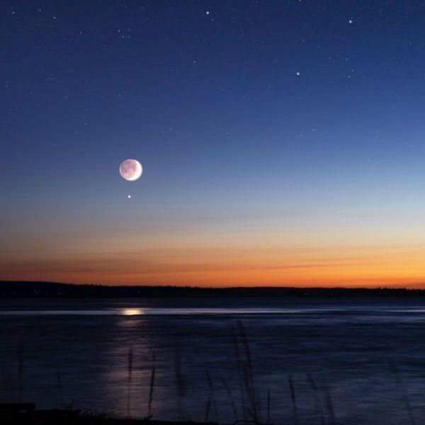 Venus - Photo by Chad Peltola on Unsplash