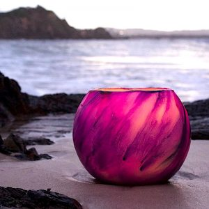 Strikingly beautiful, this Venus Grand Cauldron was photographed on the shores of Byron Bay. Photo By Frank Gumley